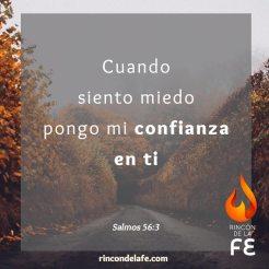 Cuando sientas miedo confía en Dios