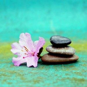 Compasión-el-rincon-de-mindfulness