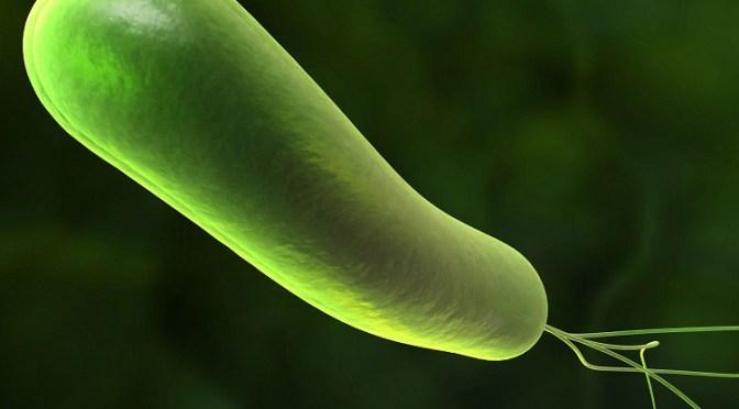 """City Weekend Beijing: """"Health Matters: Helicobacter Pylori"""""""