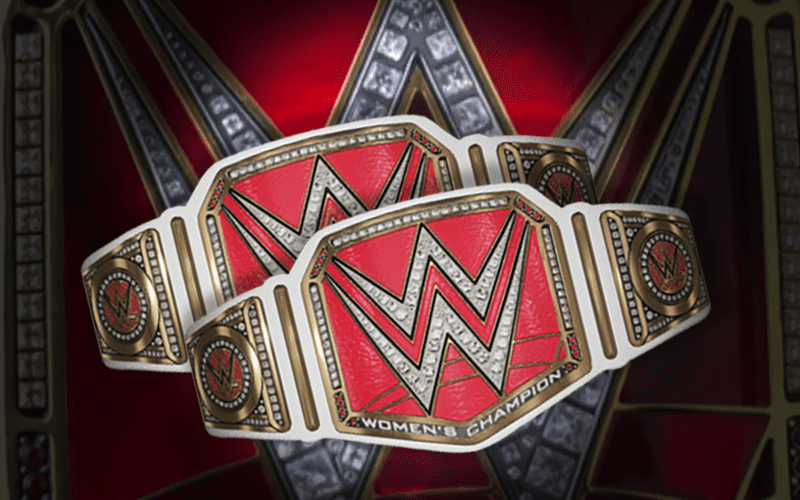 Image result for The Latest on The Rumored WWE Women's Tag Team Titles