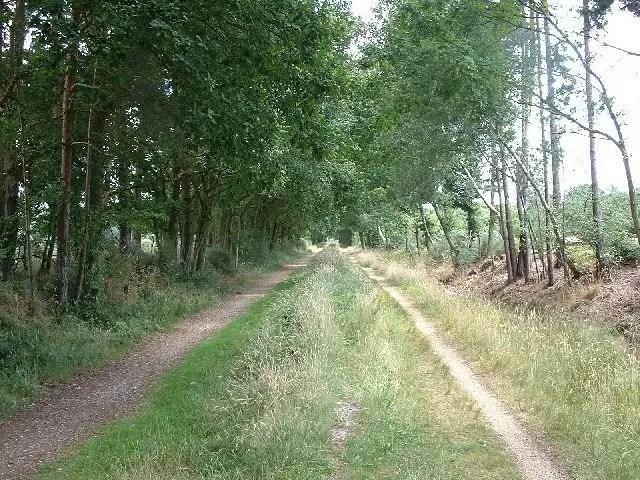 Castleman Trailway