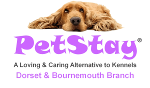 Home Dog Boarding with PetStay Dorset & Bournemouth