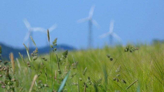 EGP avvia il parco eolico di Dois Riachos in Brasile