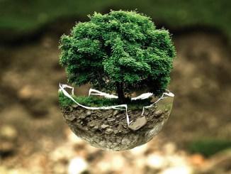 """Enel e Symbola """"100 italian energy stories"""", verso l'energia sostenibile"""