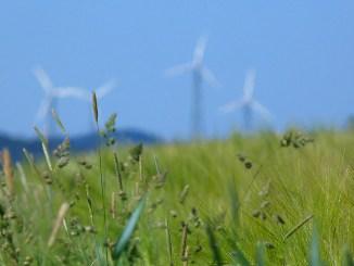 Enel avvia l'impianto eolico Damascena, in Brasile