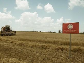 Birra Peroni e HORTA, l'agricoltura si fa sostenibile
