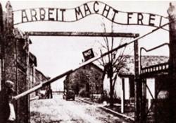 EVIDENZA-Sopravvissuto-Auschwitz