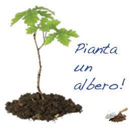 pianta_albero
