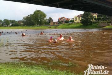 Mit Pro Rinteln ins Wasser: Beim Weserschwimmen den heimischen Fluss erkunden