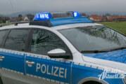 Nach Unfall mit Rehen: Polizei sucht Hundehalter