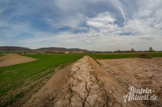 09 rintelnaktuell kohlenstaedt archeologie ausgrabungen windkraftanlagen vorbereitung bau boden knochenfund windrad