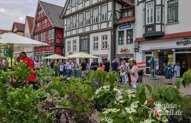 30 rintelnaktuell bauernmarkt rinteln 2018 juni altstadt innenstadt fussgaengerzone