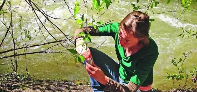 Seeking student Water Sentinels