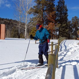 photo of xc skiers