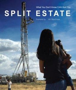 poster for the film split estate