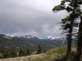 Truchas Peaks from Hamilton Mesa.