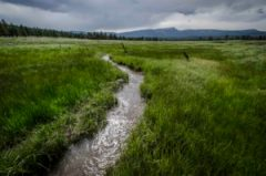 Dirty-Water Move by Trump Administration Threatens New Mexico Waters