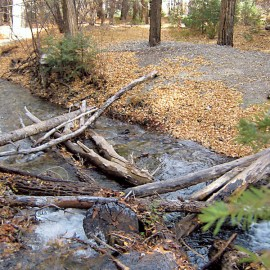 Carson National Forest jeopardizes its rivers