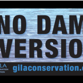 Rally to Keep the Gila Wild – July 2