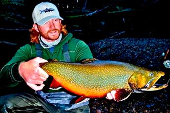 Big brook trout argentinian