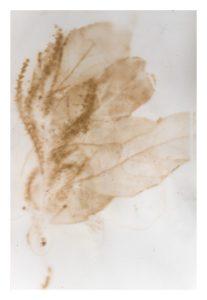 Theatricum Botanicum reviewed at Riot Material magazine