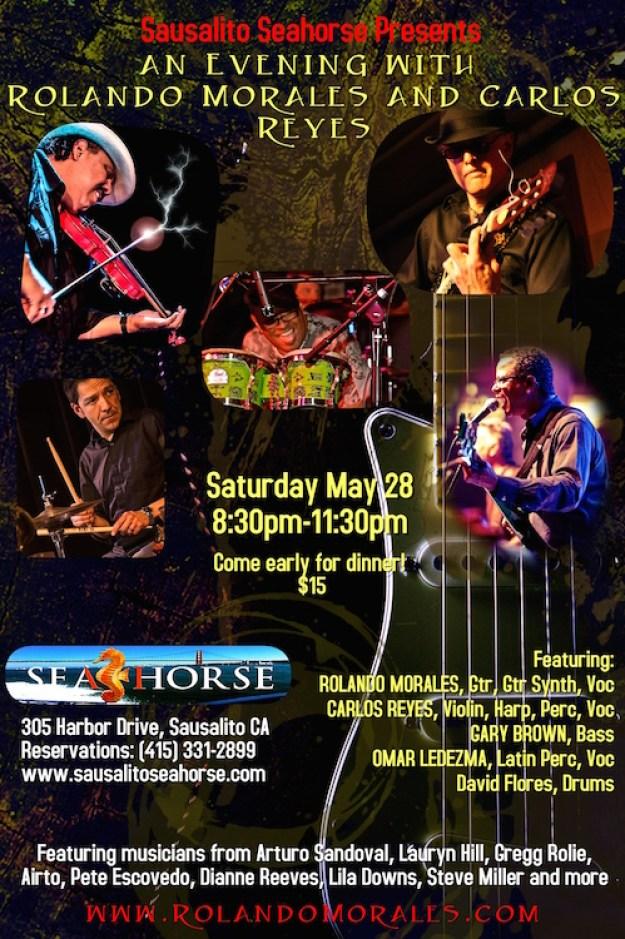 Seahorse May 2