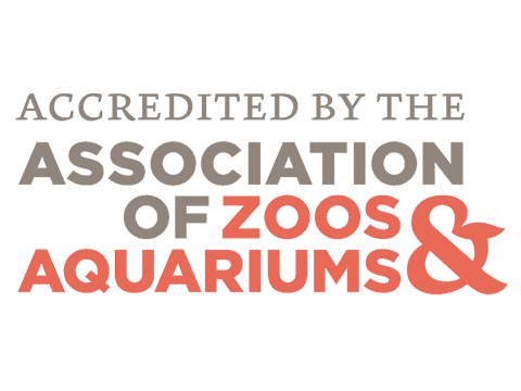 accredited by the association of zoos aquariums image