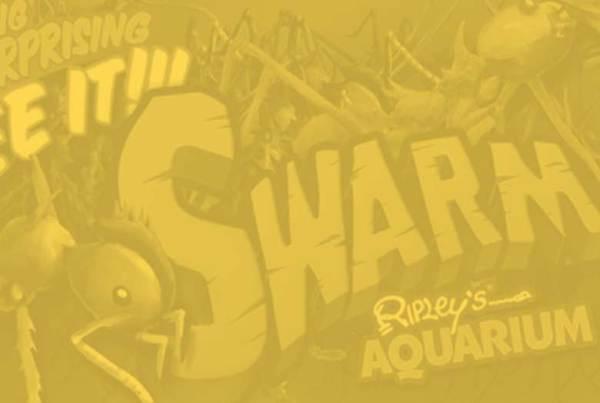 swarmmp