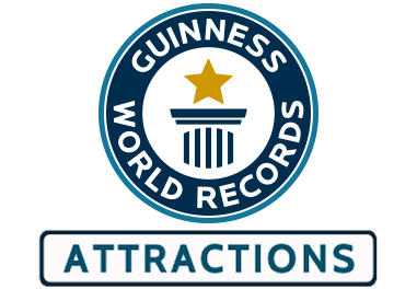 Magnificent phrase guinness world records agree with