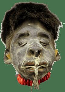 Authentic Shrunken Head