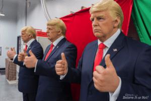 trump-wax-03