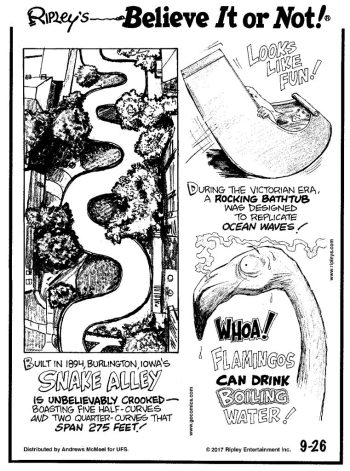 SnakeAlley-Cartoon