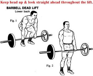 proper deadlift technique