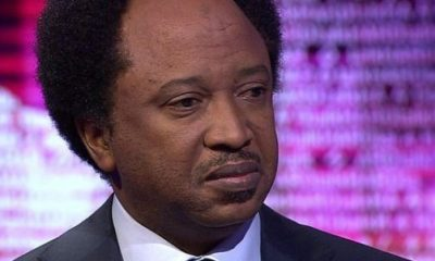 Ben Bruce woes Shehu Sani, to leave APC for PDP