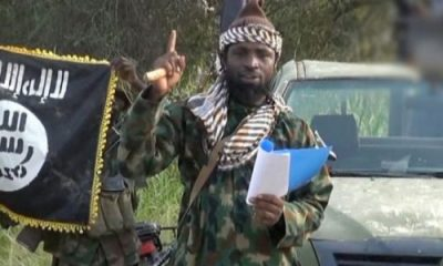'I'm tired of this calamity; it's better I die and go to rest in paradise', Shekau says in new video