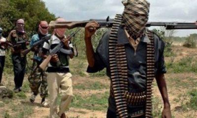 Many feared dead as Boko Haram invades Borno village