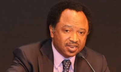Calls for INEC chairman's removal baseless— Shehu Sani