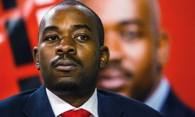 Zimbabwe opposition contests election result in court
