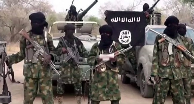 Salkida gives insight into why B'Haram murdered aid workers, chances of Leah Sharibu, Alice