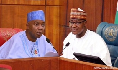 Your protest is against the law, lawmakers tell N'Assembly staff