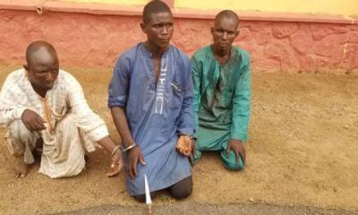 Three herdsmen arrested for allegedly killing farmer in Ogun
