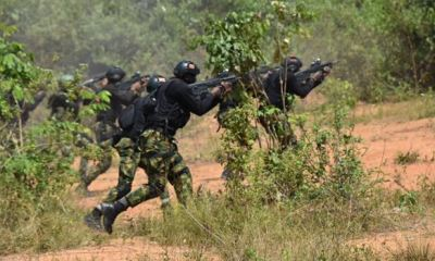 NAF says airstrikes by 'Operation Rattle Snake' killed several B'Haram terrorists