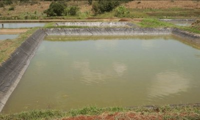 Agency woos youths to key into aquaculture