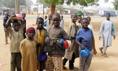 South, Middle Belt leaders decry invasion by Almajiris amid COVID-19 directives