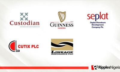 Custodian Investment, Guinness, Seplat top Ripples Nigeria stock watchlist