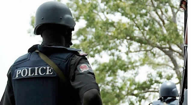 Police2 FCT Police denies assault on Sowore, slams media reports