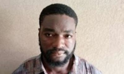 NDLEA arrests undergraduate engaged in sale of drugged cookies to schoolchildren in Abuja