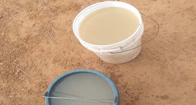 Water from the borehole