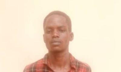 Kwara Police arrests traveller with fresh human parts