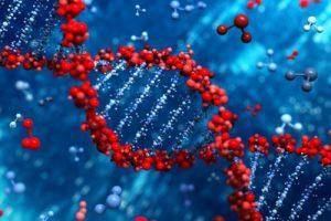 Modifica DNA di un embrione : gruppo cinese é riuscito
